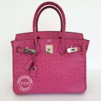 30cm Fuschia Birkin in Ostrich with Palladium